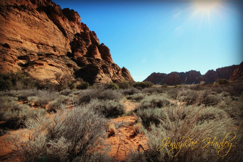 snow canyon wide angle signed